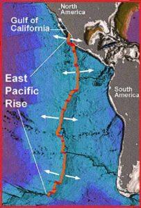 Восточно-Тихоокеанский рифт (The East Pacific Rise)